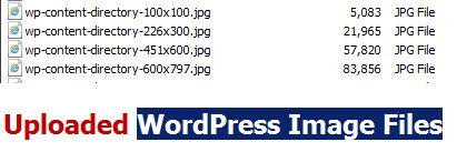 Uploaded-WordPress-Image-Files