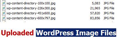 Uploaded-WordPress-Image-Files