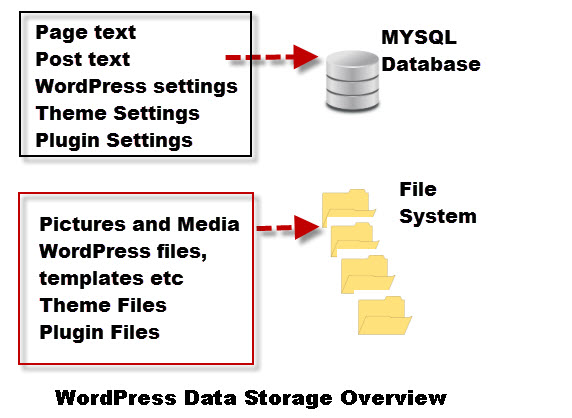 WordPress-Data-Storage-Overview