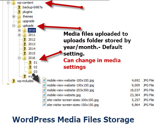WordPress-Media-Files-Storage