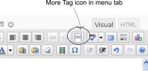 more-tag-icon