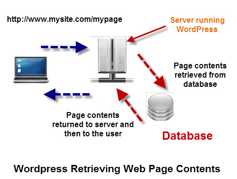 wordpress-retrieve-page-database