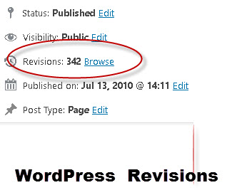 wordpress-revisions-count